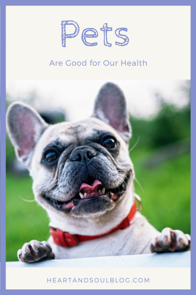 """Smiling French bulldog with the blog title """"Pets Are Good for Our Health"""""""