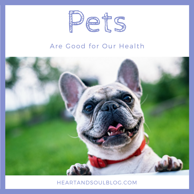 Pets are good for our health thumbnail image