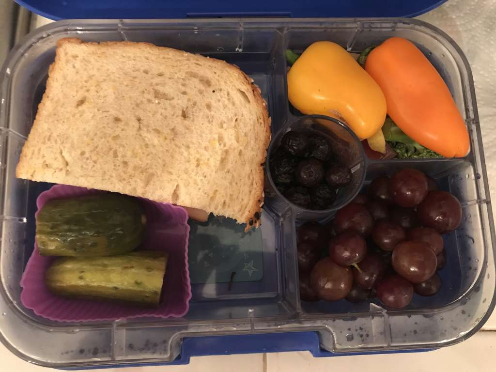 Example of school lunches with turkey and cheese sandwich, pickle, peppers and broccoli, grapes, and frozen blueberries.