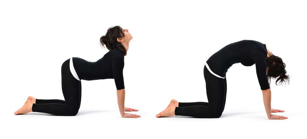 woman in black shirt and pants with black hair yoga stretching on her hands and knees